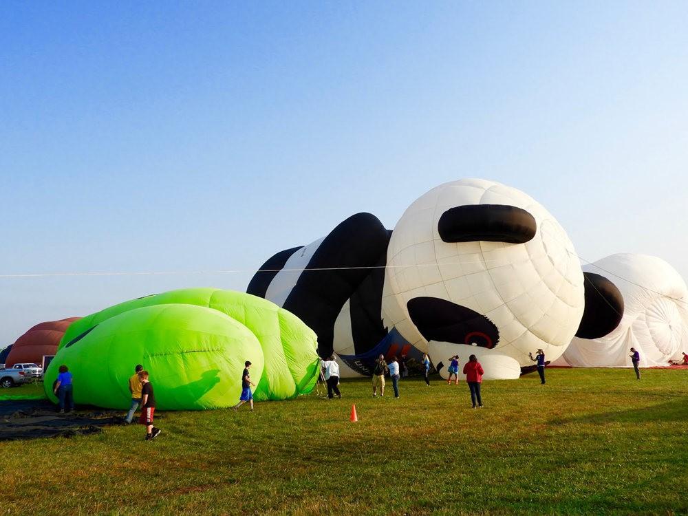 2019 QuickChek气球节_图1-6