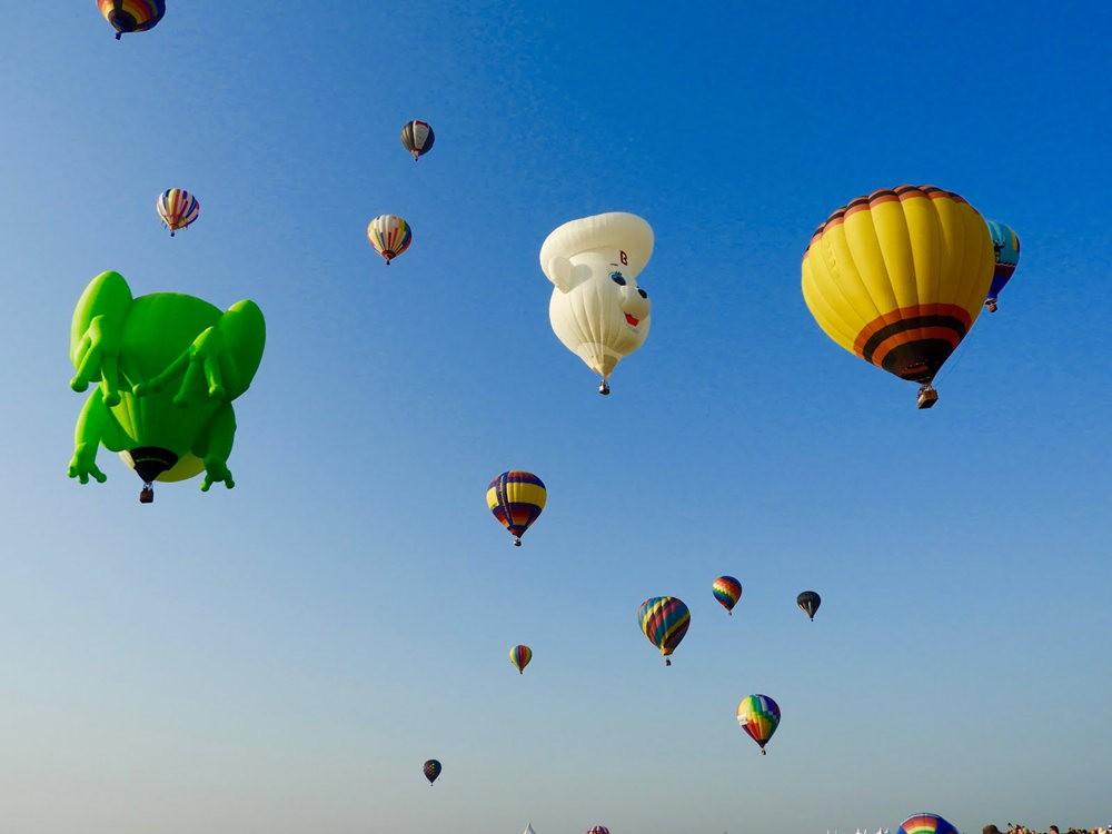 2019 QuickChek气球节_图1-15
