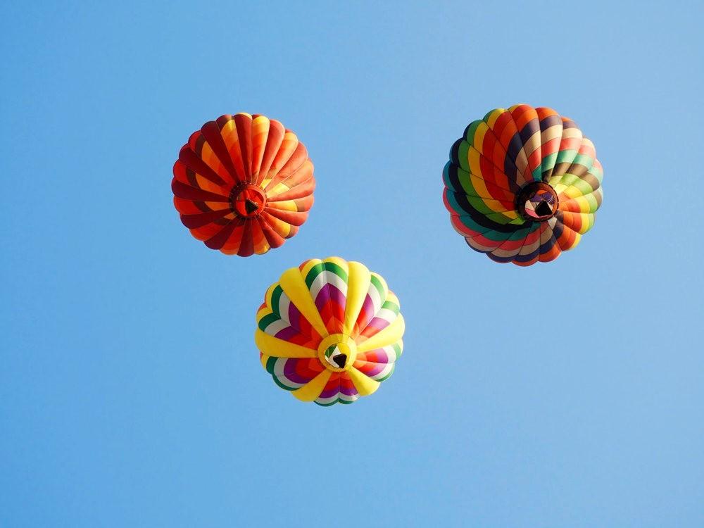 2019 QuickChek气球节_图1-17