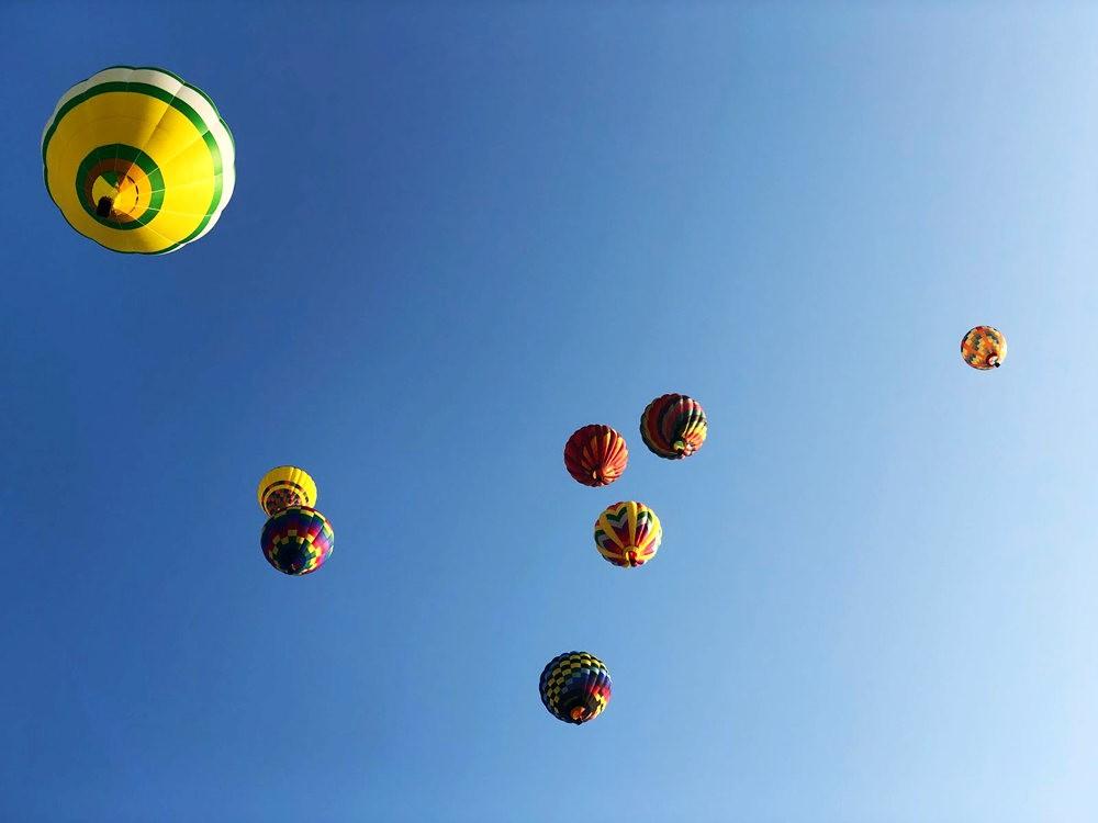 2019 QuickChek气球节_图1-18