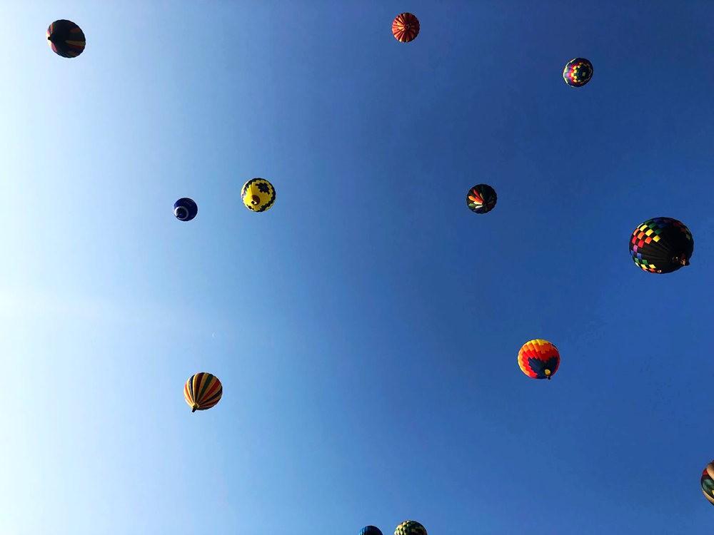2019 QuickChek气球节_图1-20