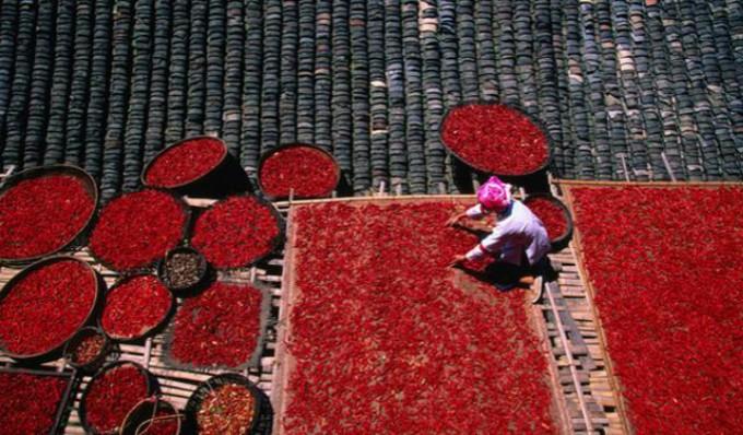 中国美女最多的地方是哪里?不是广东也不是浙江,当地人吃饭爱吃辣椒 ..._图1-6