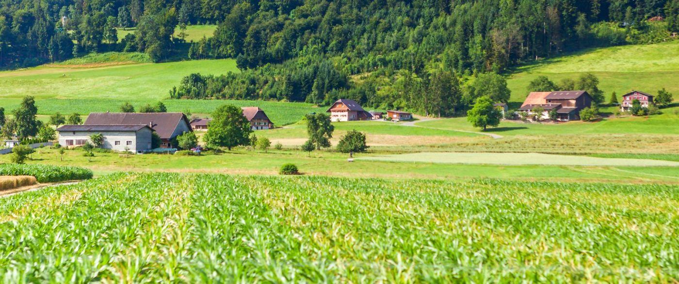 瑞士路途,好山好水好地方_图1-18