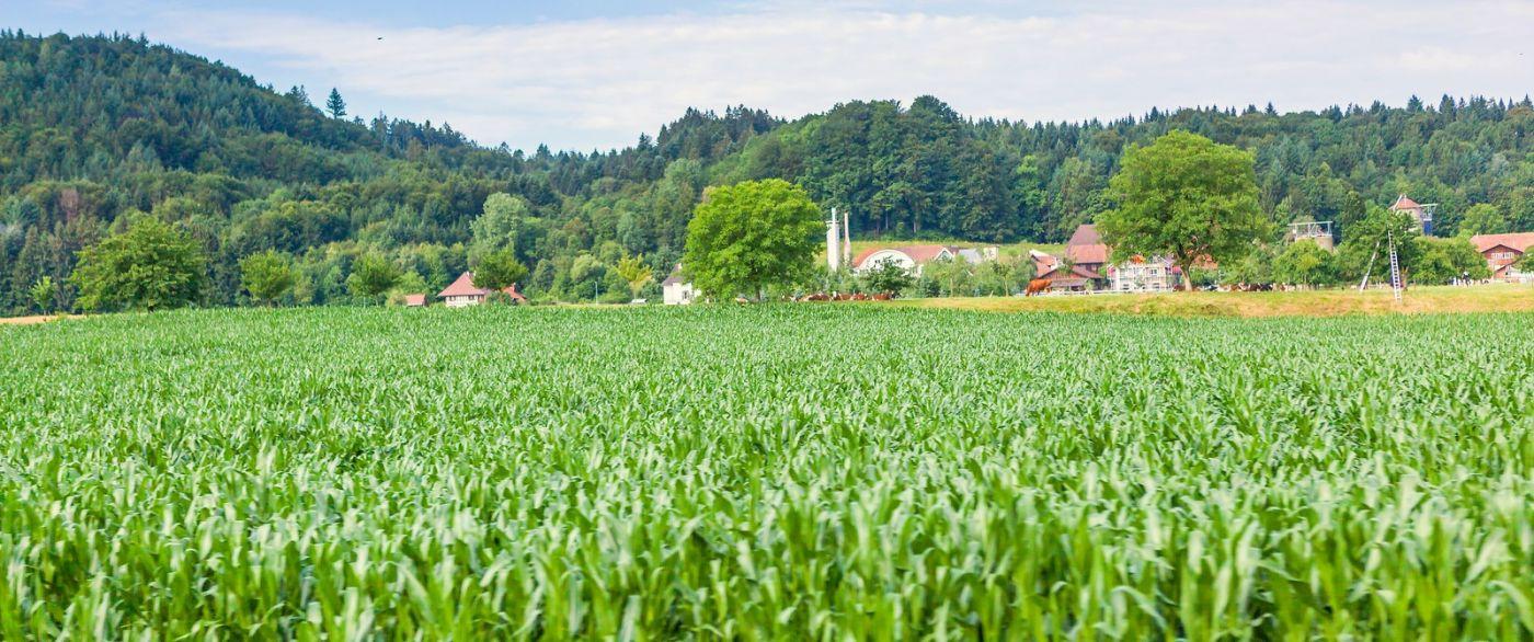 瑞士路途,好山好水好地方_图1-31