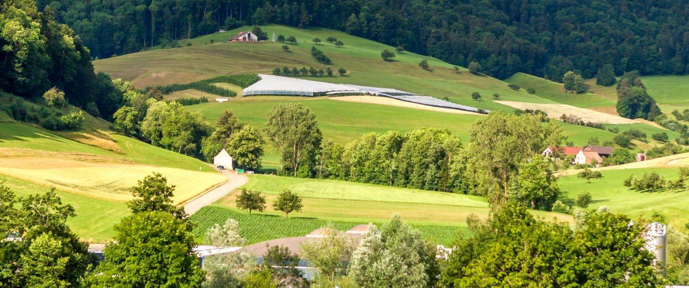 瑞士路途,好山好水好地方_图1-30