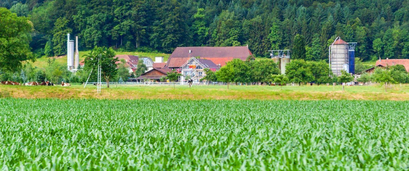 瑞士路途,好山好水好地方_图1-35