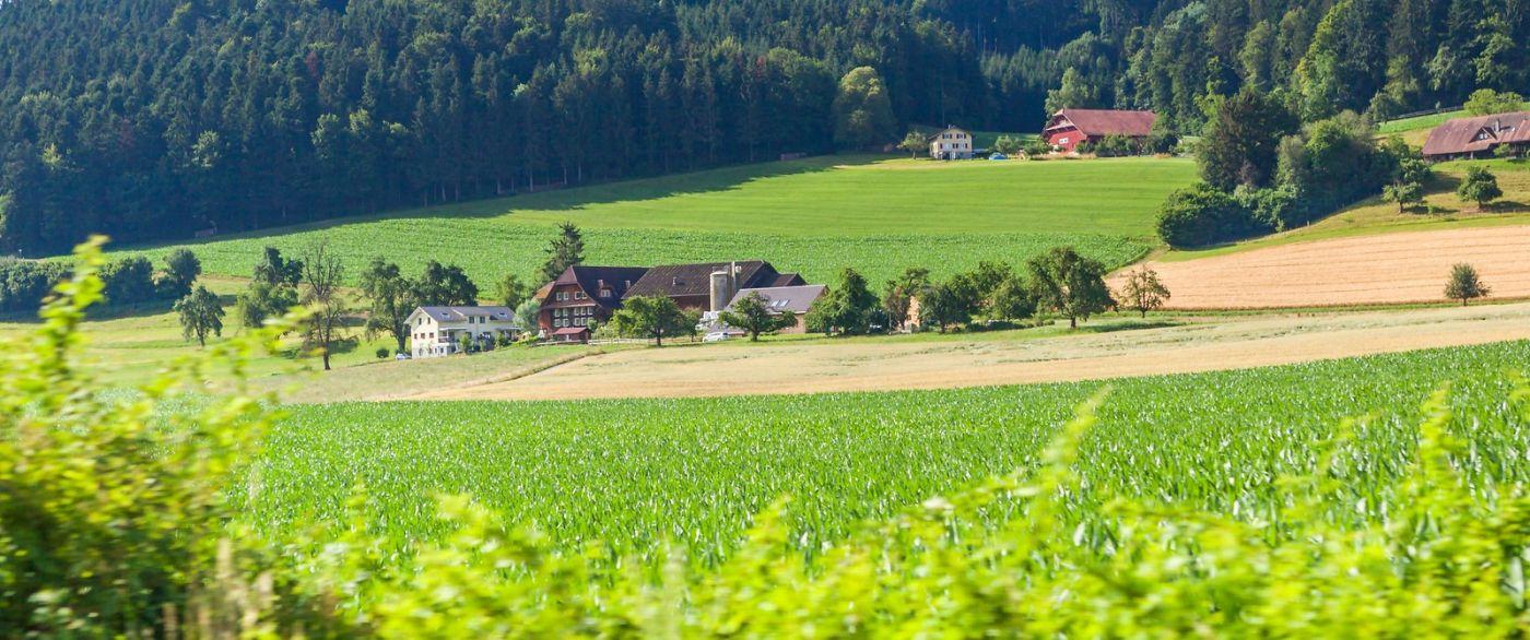 瑞士路途,好山好水好地方_图1-37