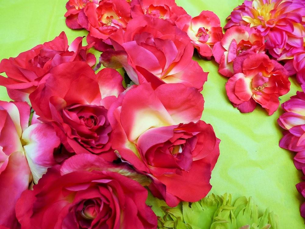 玫瑰是花中皇后_图1-22