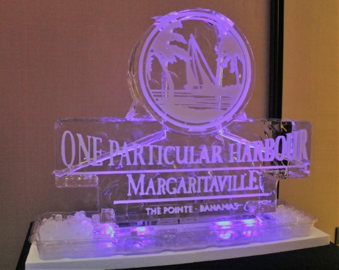 高娓娓:巴哈马ThePointe高端海景公寓推介会闪耀亮相美国时代广场 ... ... ... ... .. ..._图1-23