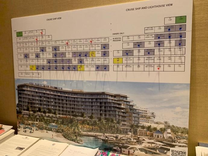 高娓娓:巴哈马ThePointe高端海景公寓推介会闪耀亮相美国时代广场 ... ... ... ... .. ..._图1-26
