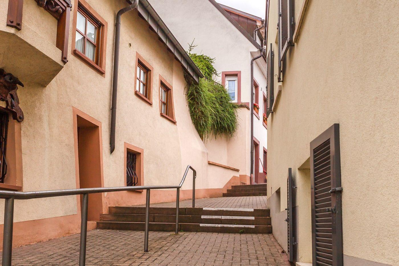 德国布赖萨赫(Breisach),城小历史久_图1-8