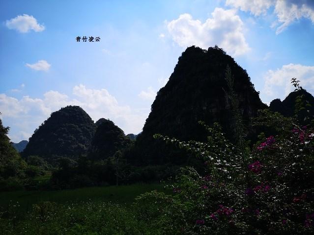 【青竹凌云】素洁的田园景色(原创摄影)_图1-4