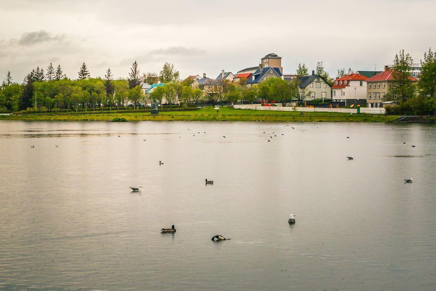 冰岛雷克雅未克(Reykjavík),游城中湖_图1-4