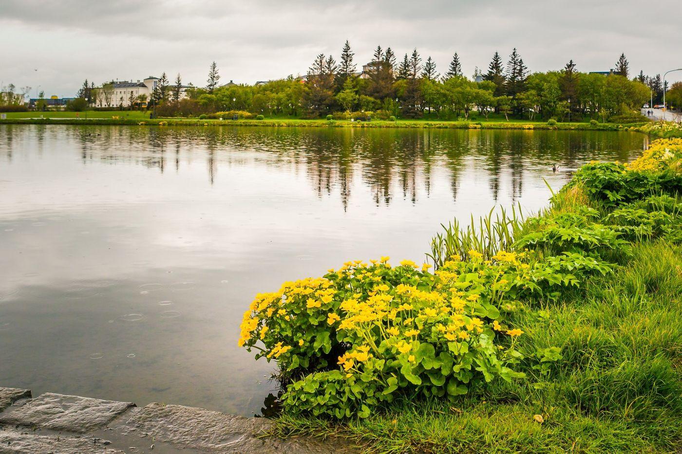 冰岛雷克雅未克(Reykjavík),游城中湖_图1-7
