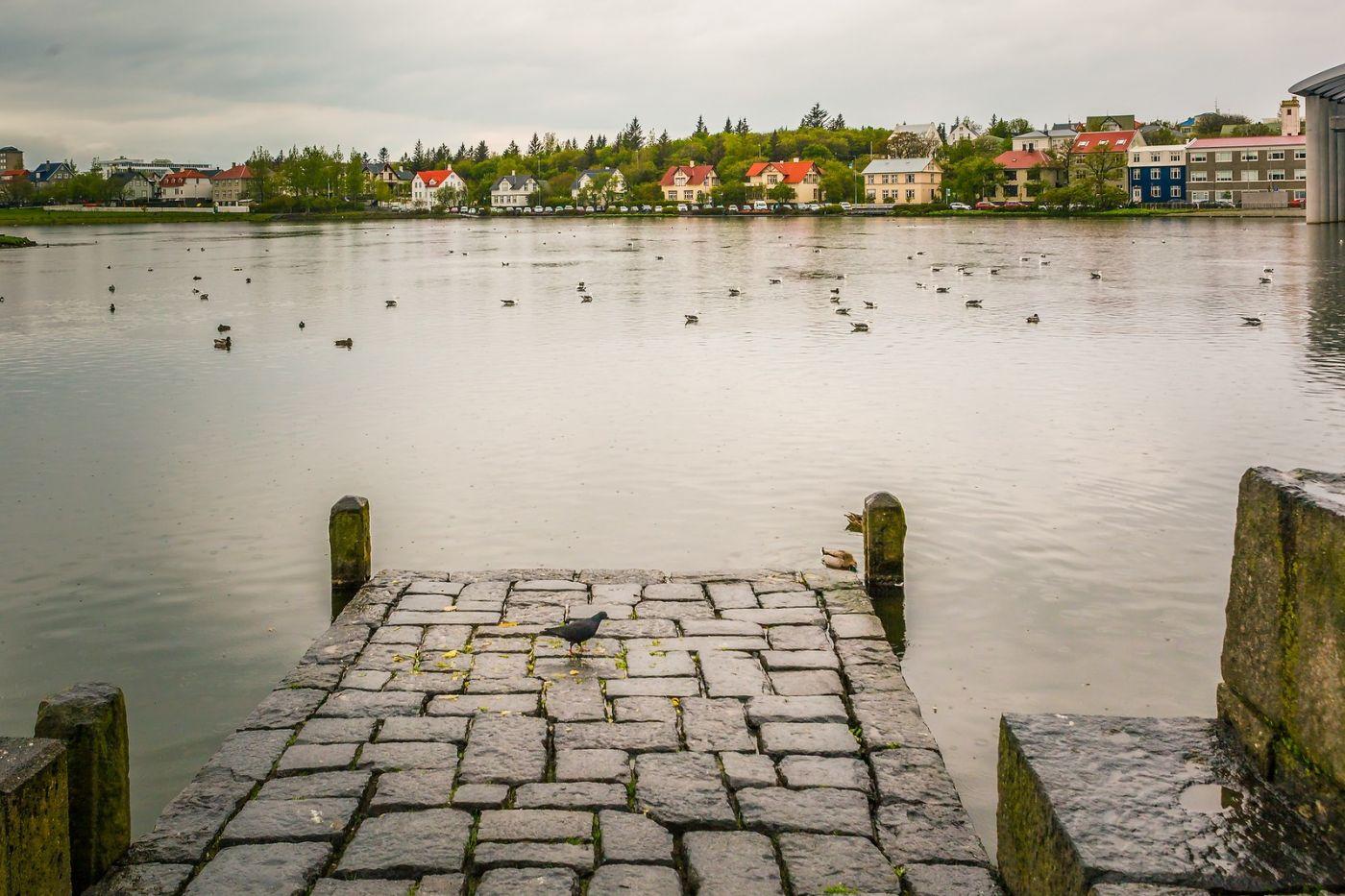 冰岛雷克雅未克(Reykjavík),游城中湖_图1-23