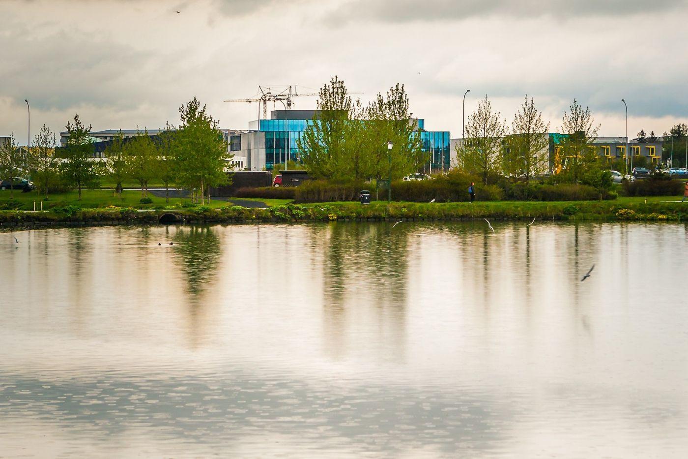 冰岛雷克雅未克(Reykjavík),游城中湖_图1-24