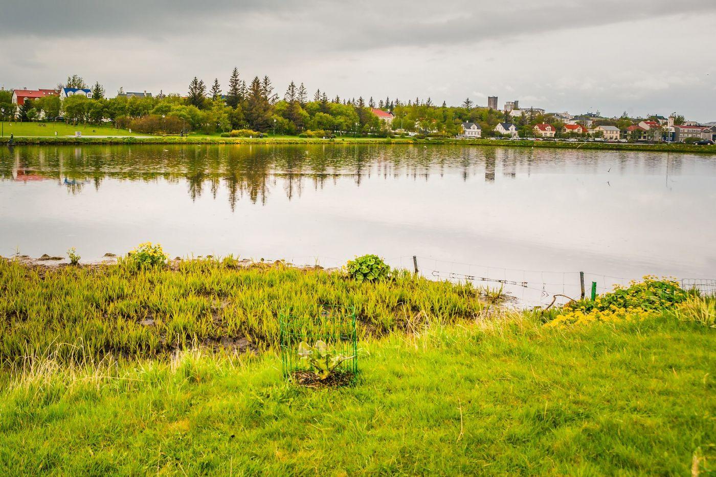 冰岛雷克雅未克(Reykjavík),游城中湖_图1-29