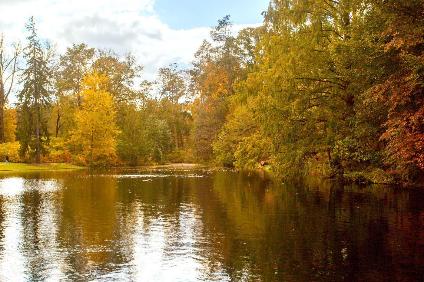 宾州长木公园,定格美好的画面_图1-30