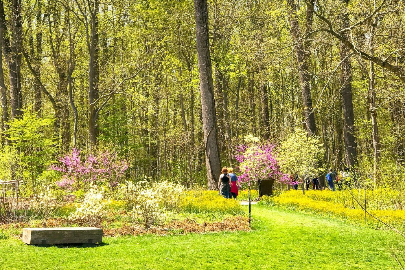 宾州长木公园,定格美好的画面_图1-25
