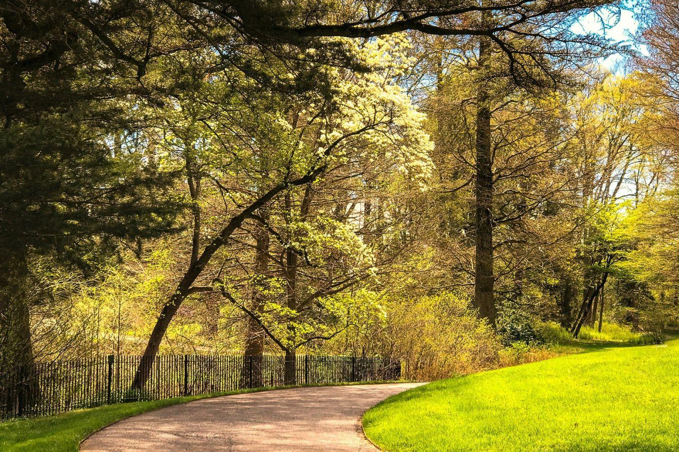 宾州长木公园,定格美好的画面_图1-23