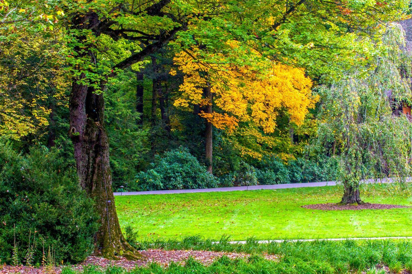 宾州长木公园,定格美好的画面_图1-3