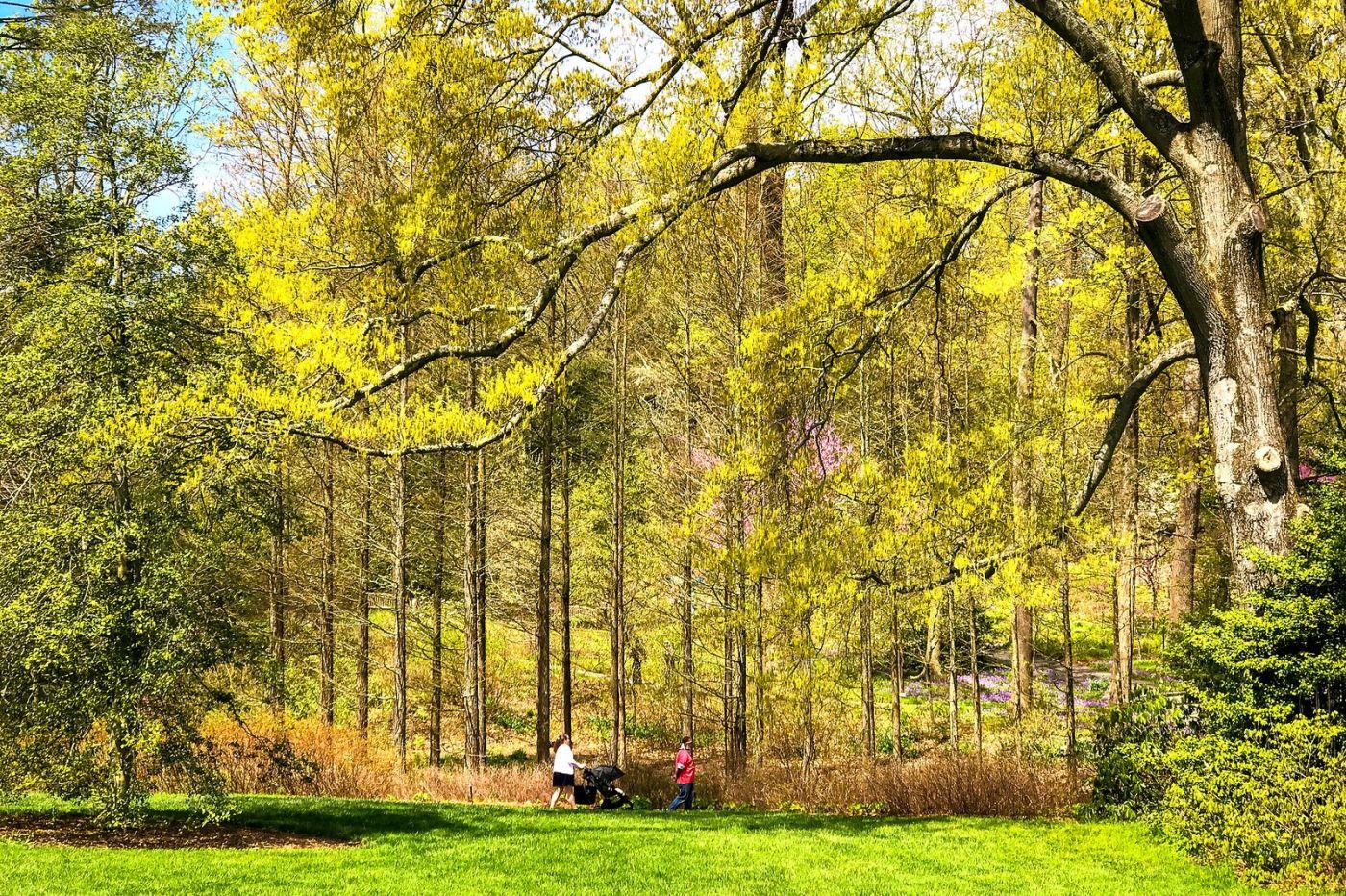 宾州长木公园,定格美好的画面_图1-19