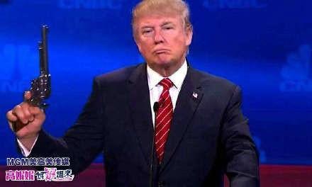 高娓娓:假如美国禁枪,会有什么后果?看了你就知道为什么美国不能禁枪 ... ..._图1-1