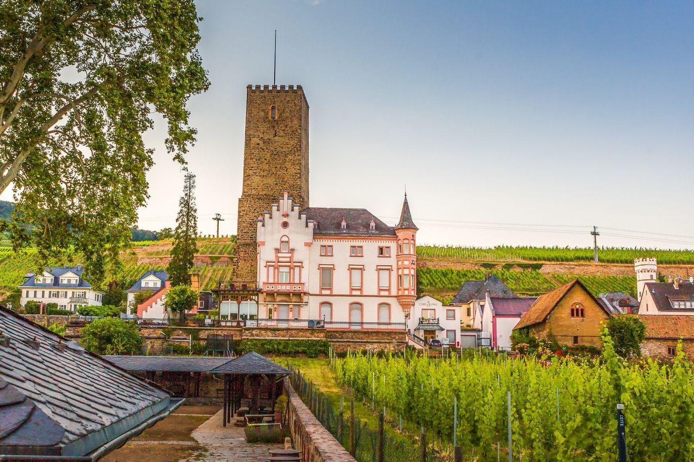 德国吕德斯海姆(Rudesheim),莱茵河畔的小镇_图1-28