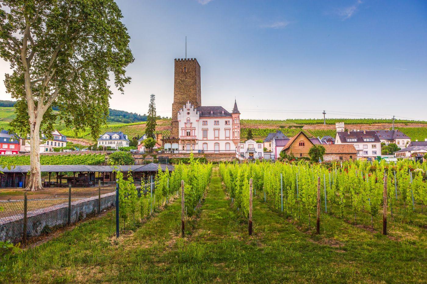 德国吕德斯海姆(Rudesheim),莱茵河畔的小镇_图1-15