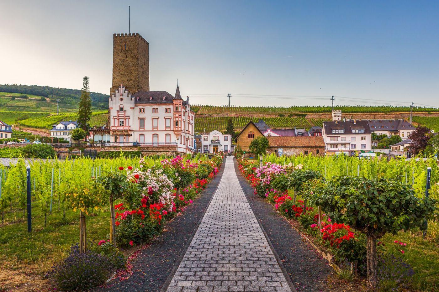 德国吕德斯海姆(Rudesheim),莱茵河畔的小镇_图1-18