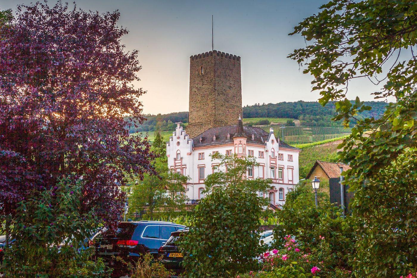 德国吕德斯海姆(Rudesheim),莱茵河畔的小镇_图1-10