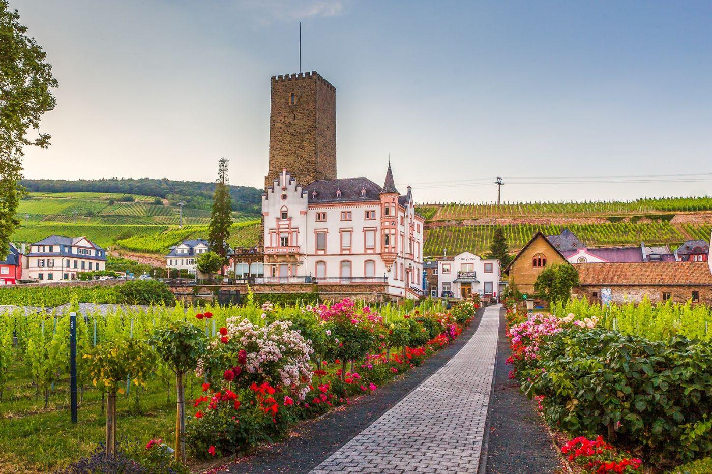 德国吕德斯海姆(Rudesheim),莱茵河畔的小镇_图1-1