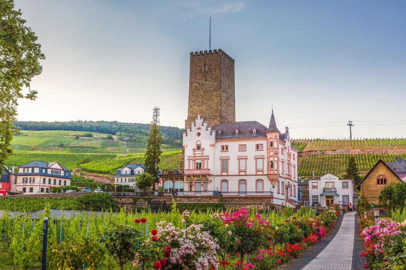 德国吕德斯海姆(Rudesheim),莱茵河畔的小镇_图1-6