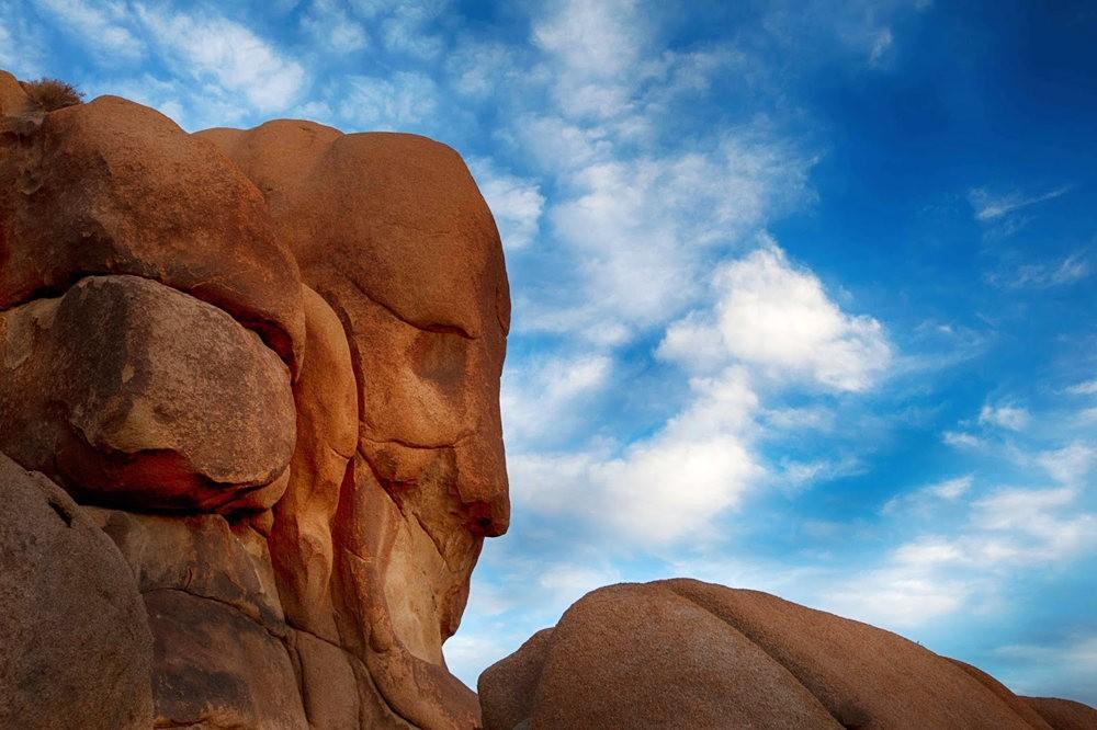 """约书亚树国家公园----""""面岩""""_图1-1"""