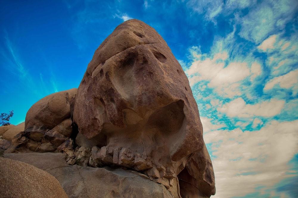 """约书亚树国家公园----""""面岩""""_图1-7"""