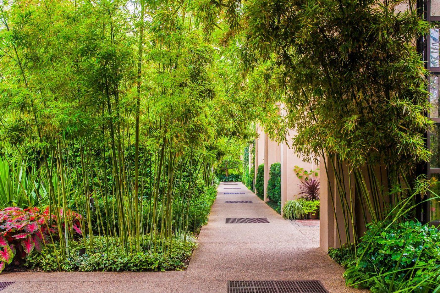 宾州长木公园,室内花园美如画_图1-4