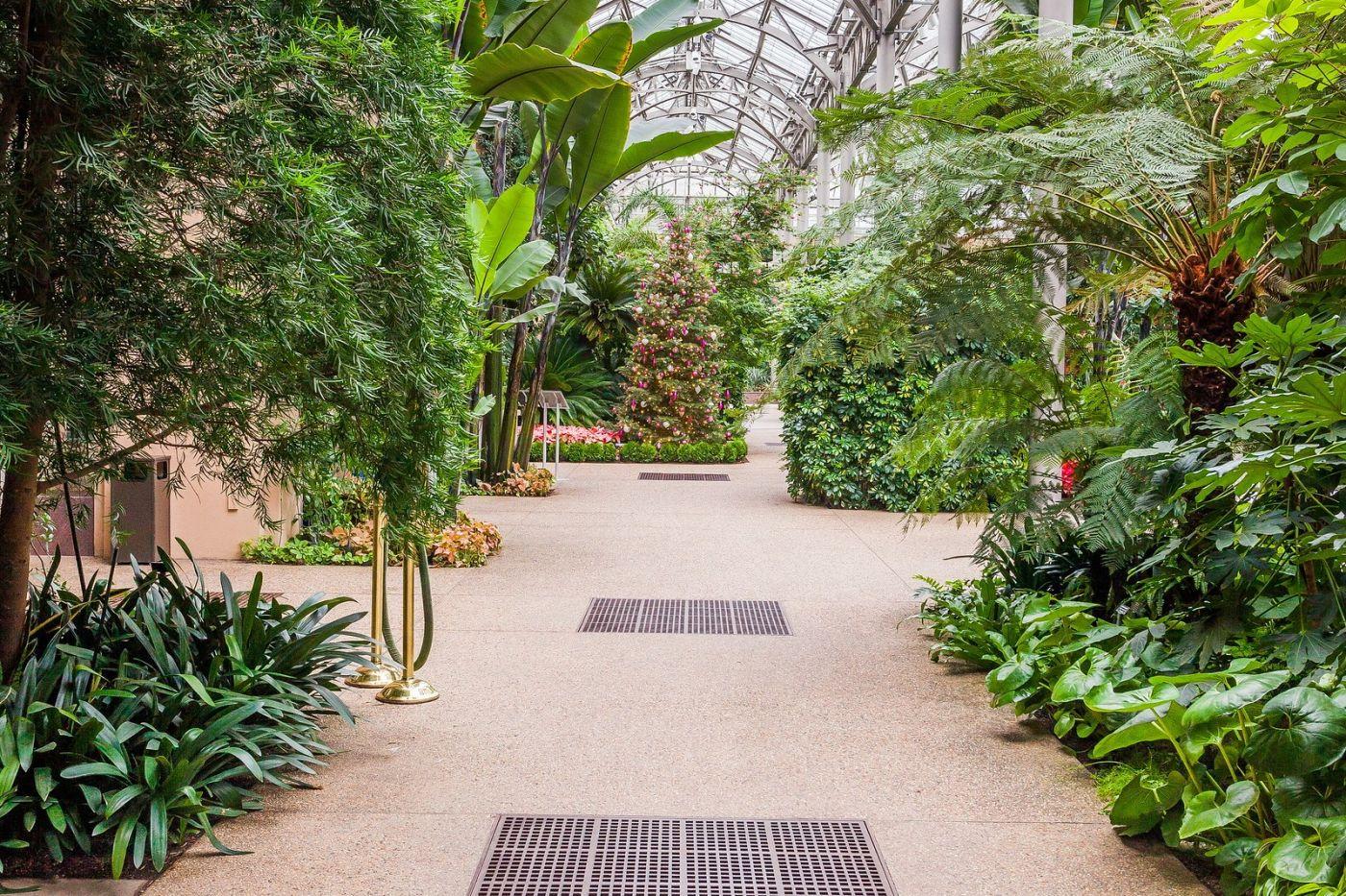 宾州长木公园,室内花园美如画_图1-25