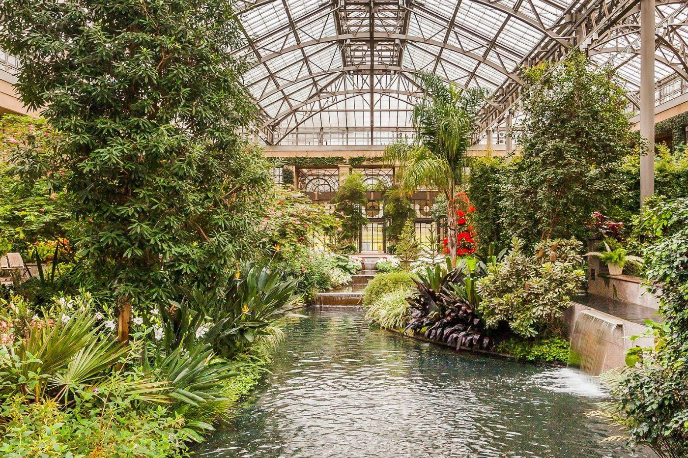 宾州长木公园,室内花园美如画_图1-39