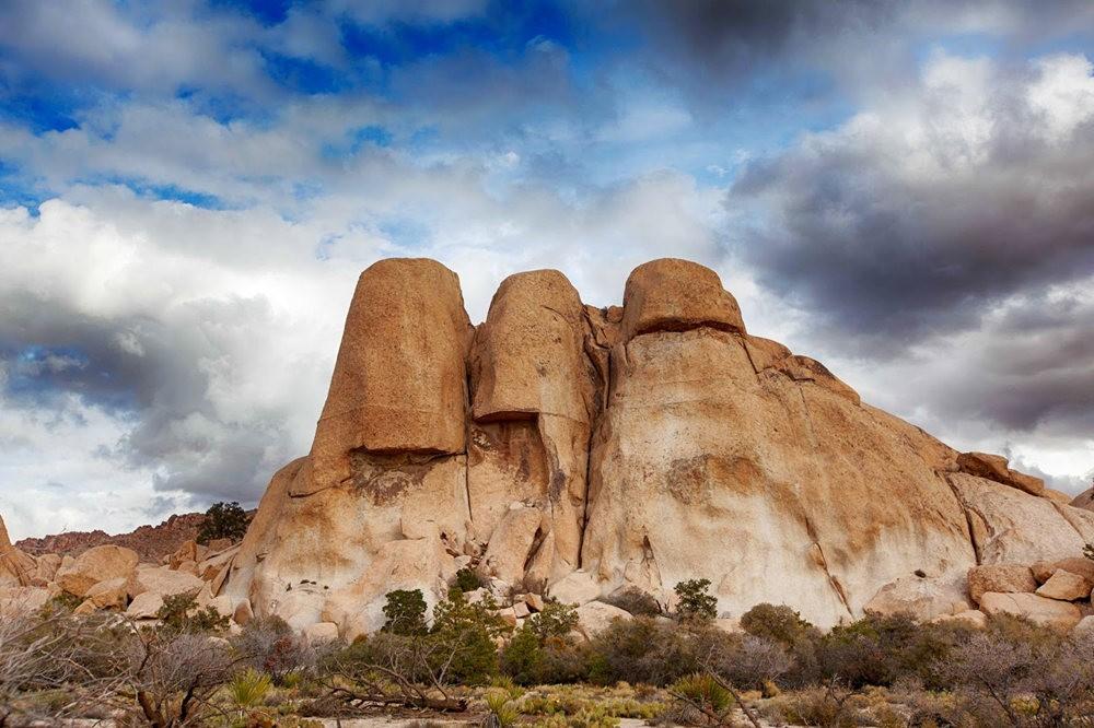 约书亚树国家公园石阵---2 仙境岩区_图1-1