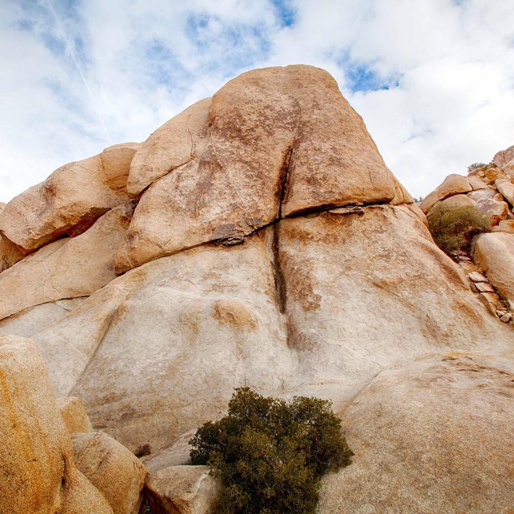 约书亚树国家公园石阵---2 仙境岩区_图1-8