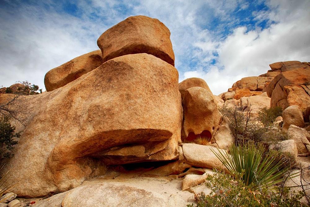 约书亚树国家公园石阵---2 仙境岩区_图1-10