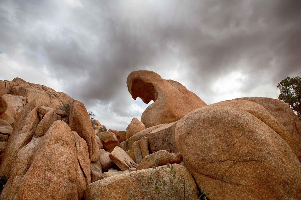 约书亚树国家公园石阵---2 仙境岩区_图1-18