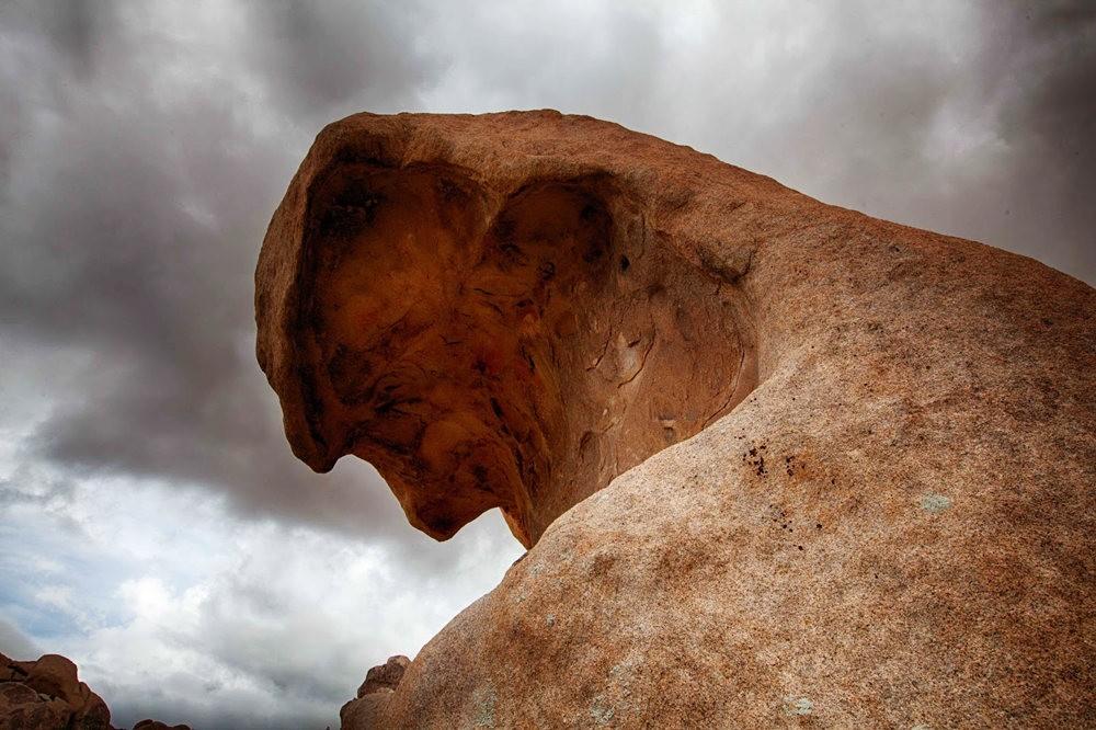 约书亚树国家公园石阵---2 仙境岩区_图1-19