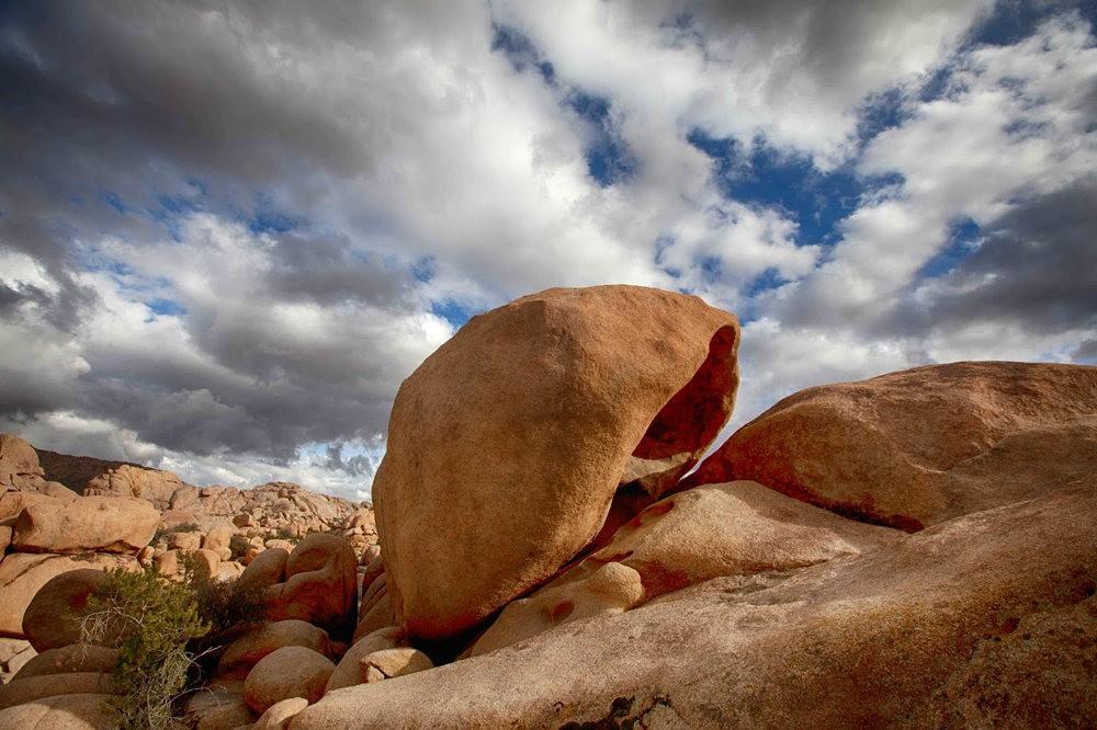 约书亚树国家公园石阵---2 仙境岩区_图1-23