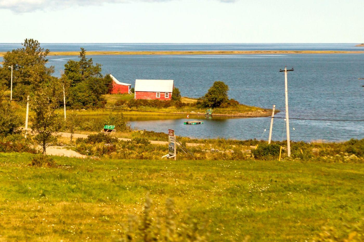 加拿大旅途,乡村的幸福生活_图1-28