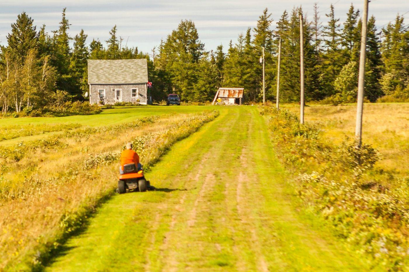 加拿大旅途,乡村的幸福生活_图1-21
