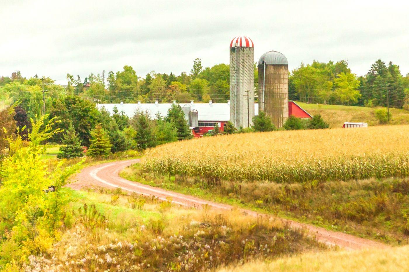 加拿大旅途,乡村的幸福生活_图1-17