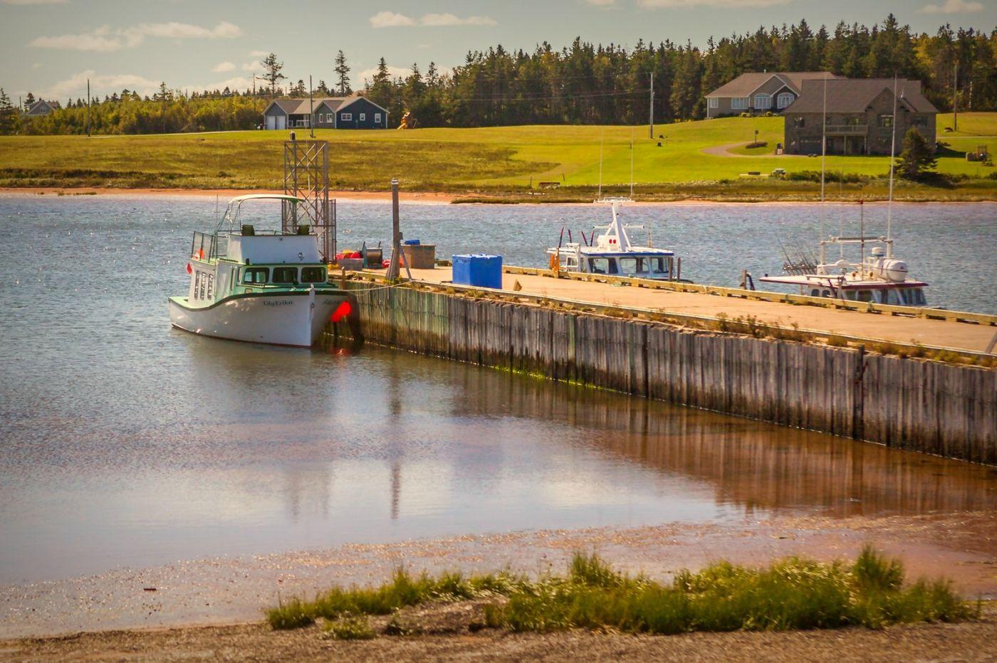 加拿大旅途,乡村的幸福生活_图1-20