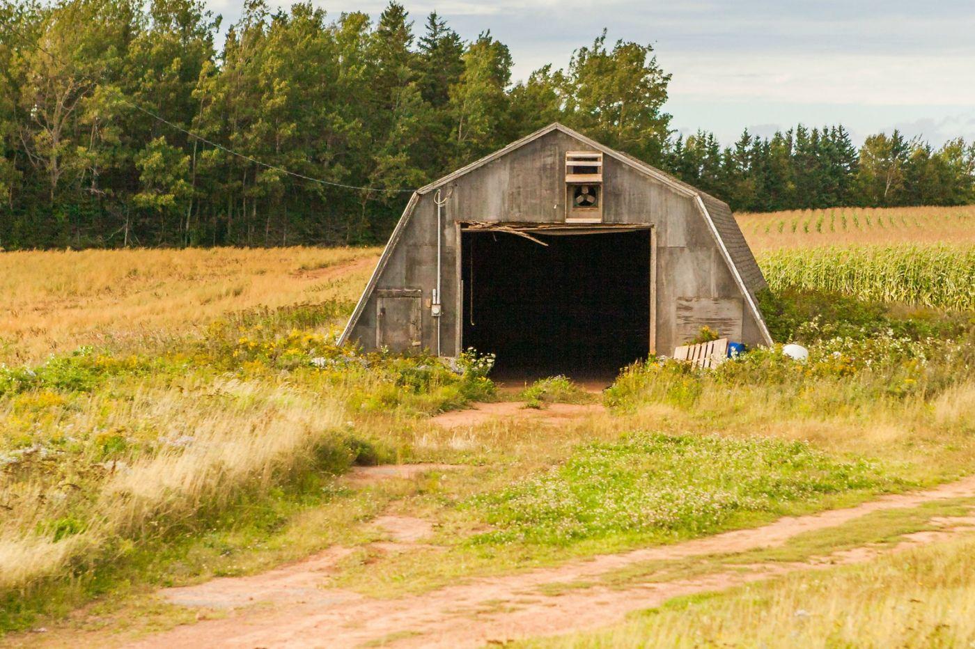 加拿大旅途,乡村的幸福生活_图1-8