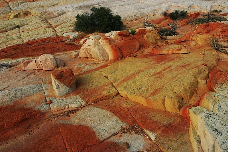 棉花木峡谷之------红岩,白岩与黄岩_图1-1